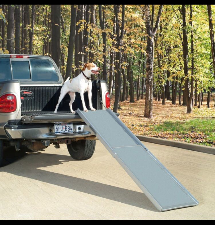 NEW Pet Ramp