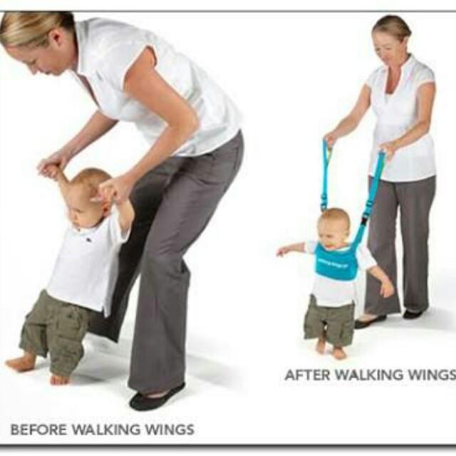 Walking Wings