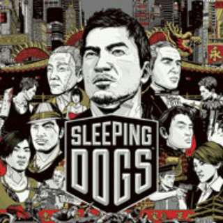 Used Sleeping Dogs Game For Sale