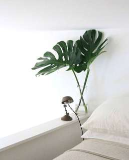 IKEA Monstera Leaf Artificial