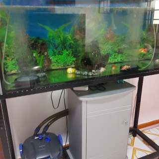 Fish tank with powerful water filter system and cabinet fiull of acessories and fish tonics