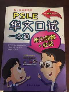 Effective Guidebook for PSLE Chinese