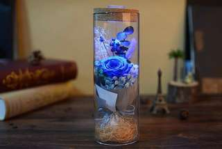 Premium Preserved Roses with Remote Control LED Lights