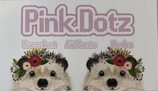 Pink.Dotz will be at HortPark Basement multi purpose hall booth L9 on the 17 March