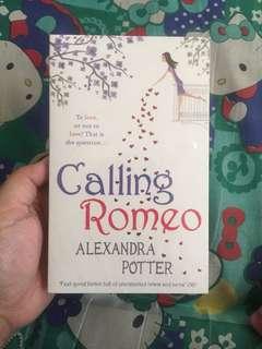 Calling Romeo (Alexandra Potter)