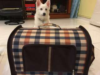Pet Carrier - High Quality