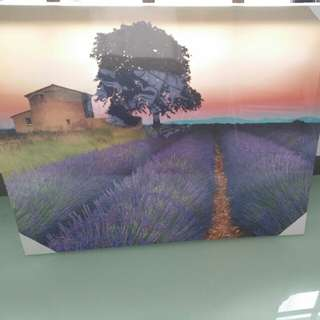 BNIB Lavender canvas painting *55cmx45cm selling only sgd 20!