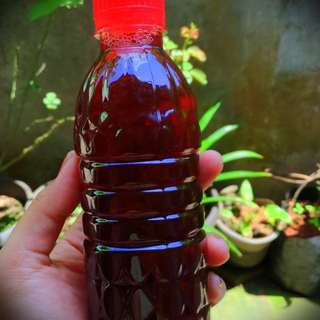 Pait an Jamu MIMI Traditional Handmade