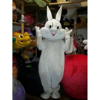 Rabbit costumes and mascot