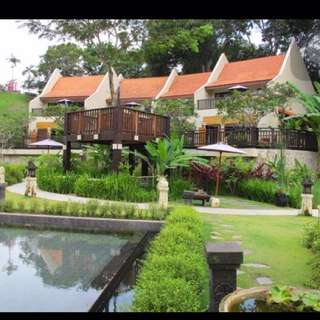 1 night Tree house villa chalet ONLY 22 or 24 june