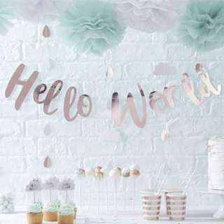 "(In Stock)Baby  Shower-"" Hello World"" Banner"