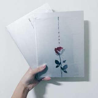 🚚 B.A.P Rose 韓壓空專