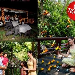 Night safari & Jurong BP