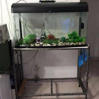 3ft Full Set Fish Tank with Stand
