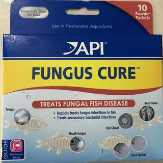 API FUNGUS CURE for Fishes
