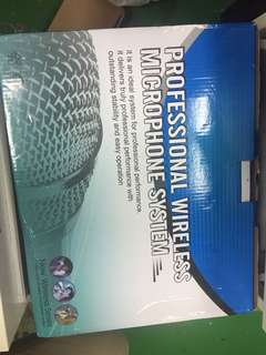 Professional karaoke set