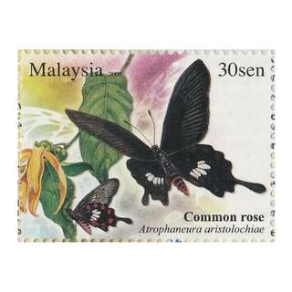 2008 Butterflies of Malaysia Common Rose 30s x 2 Mint MNH SG #SB21 (1481) (C)