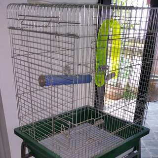 Parrot Cage for sale with stand