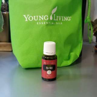 Young Living 精油 Tea Tree 15ml