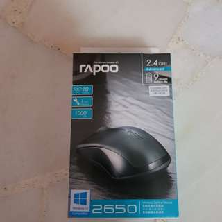 Rapoo 2650 Wireless Mouse