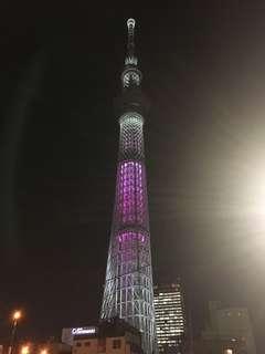 日本代購 東京連線中!!