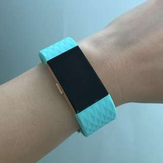 Fitbit Charge 2 Cyan Straps in 'L'