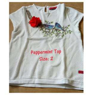 Peppermint Embroidered Top 3T