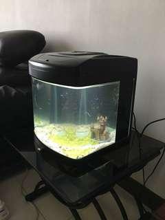 Fish tank w light & pump