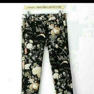 Shespree Midnight Rose Printed Pants