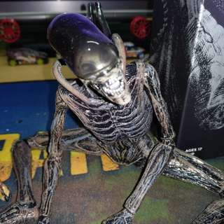 Alien figure collectible