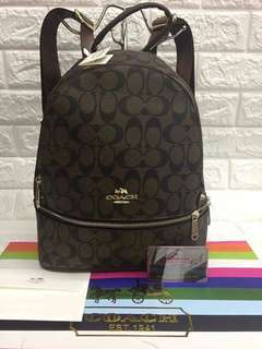 Coach Chocolate-colored Backpack