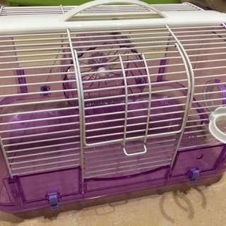 淺紫色鼠籠