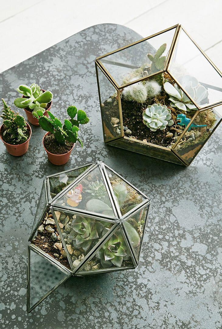 Magical Thinking Geo Glass Terrariums