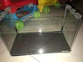 小型玻璃魚缸