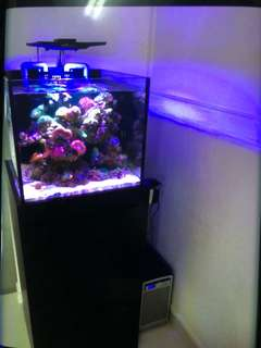 50cm fish tank set with cabinet