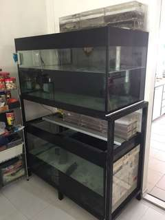 2 nos of 4x2x2ft fish tank with stand
