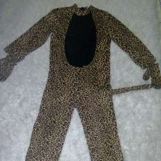 🐆 leopard 5-6 yrs old