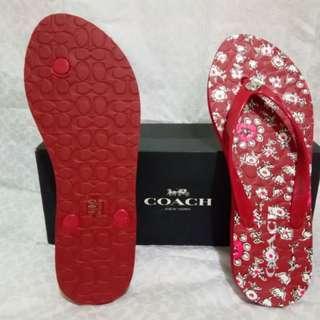 Coach Red (original)