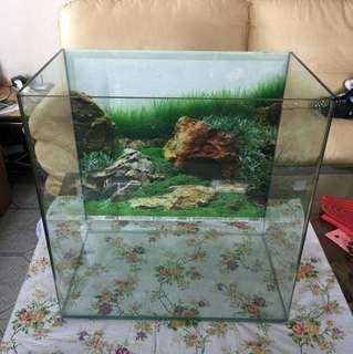 圓角魚缸。     高50Cm長50   深30