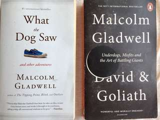 David & Goliath and What the Dog Saw