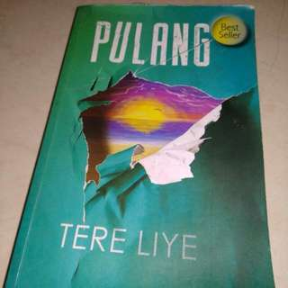 Novel Pulang