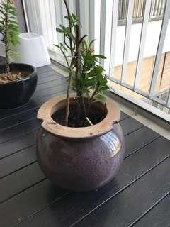 Upcycled plant pot, ceramic