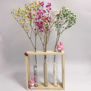Customised order - Dry Flower Terrarium - My Melody with baby breath