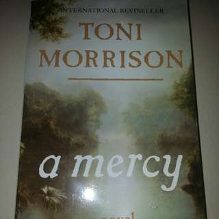 A Mercy   Paperback Vintage International English  By (author)  Toni Morrison