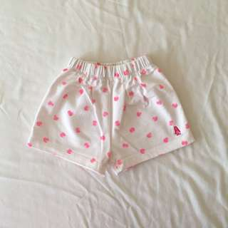 Hush Puppies Shorts