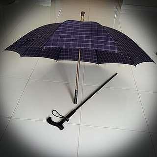 Umbrella cum Metal Walking Aid