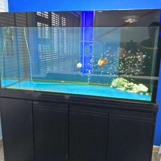 5 Feet Fish Tank and Cabinet