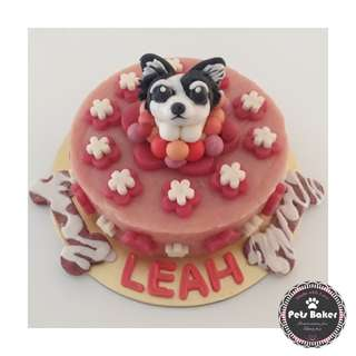 Chi Hwa Hwa Customised Cakes 🐶 (Medium)