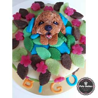 Poodle customised cake 🐶 (Medium)