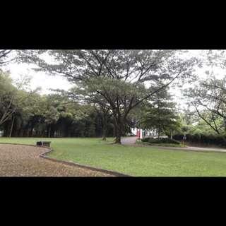 Rumah Mewah Dekat Kampus IPB